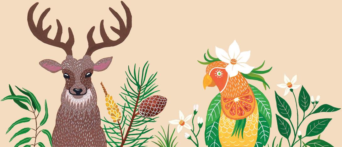 Ekološka kozmetika